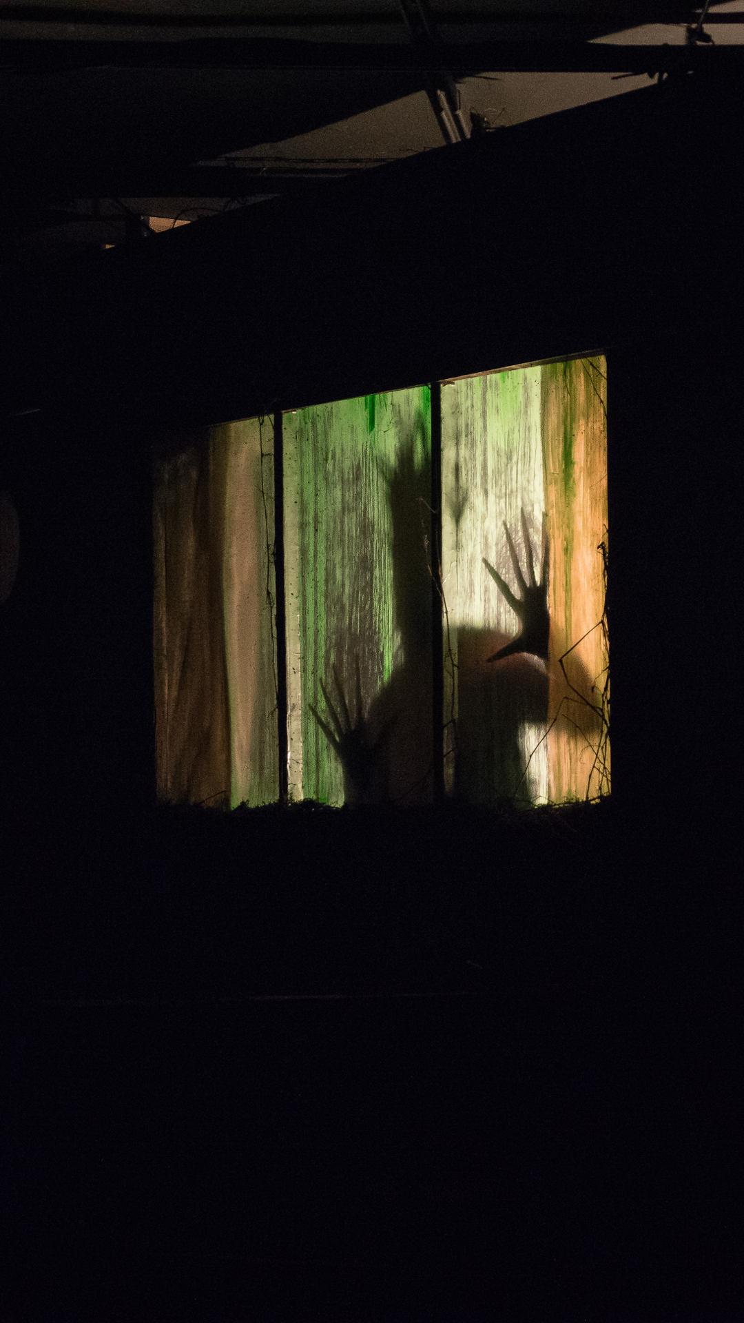 NIGHT IN ALACHUA COUNTY (WildClaw Theatre, 2017)